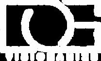 DG Visionaries logo in white